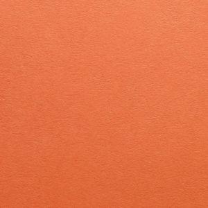 Kaskad Fantail Orange Copier
